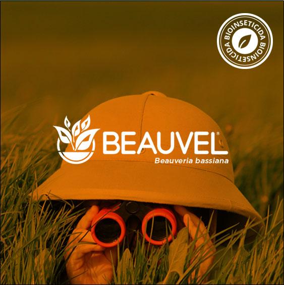 Beauvel